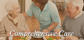 comprehensive-care